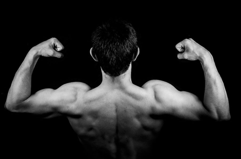 The Best Exercises for Training Your Biceps